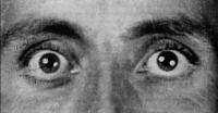 Antoine de Becque L'histoire-camera