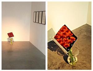"""Camille Henrot, """"La Terre Australe Connue"""", Gabriel de Foigny, 2012, marguerite du transvaal, vase; accompagné de Joseph Grigely, série Song without Words, 2012"""