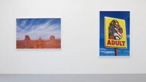 """Vue de l'exposition """"The Sacred & the Profane"""", 2015, Terry Richardson, crédits photographiques : Claire Dorn, Galerie Perrotin"""