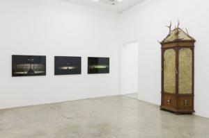 Vue de l'exposition « Sticks and Stones May Break My Bones » à la Galerie Perrotin, Paris, 2015 © Galerie Perrotin
